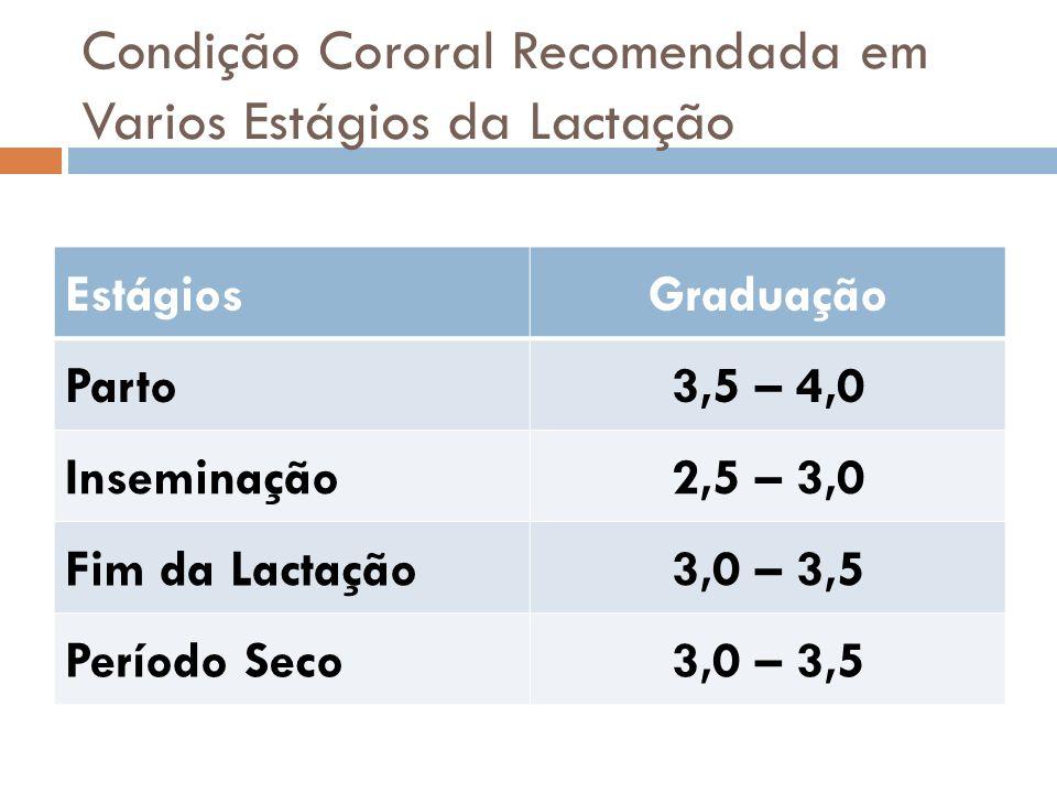 Condição Cororal Recomendada em Varios Estágios da Lactação