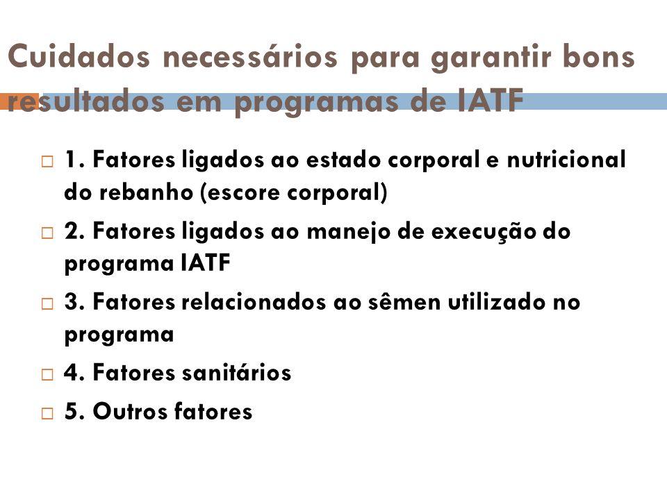 Cuidados necessários para garantir bons resultados em programas de IATF