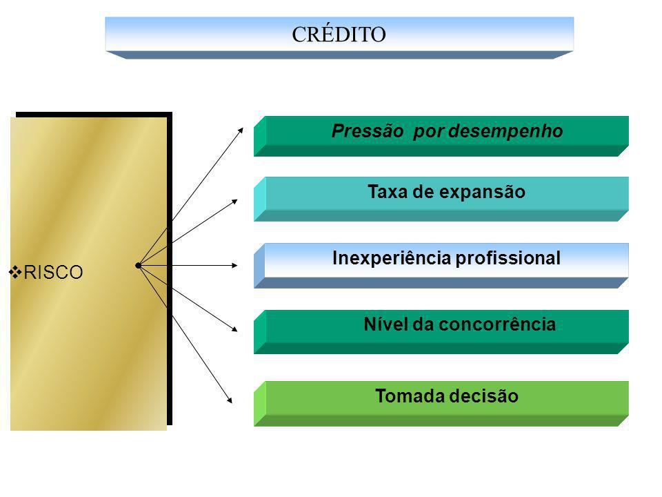 Pressão por desempenho Inexperiência profissional
