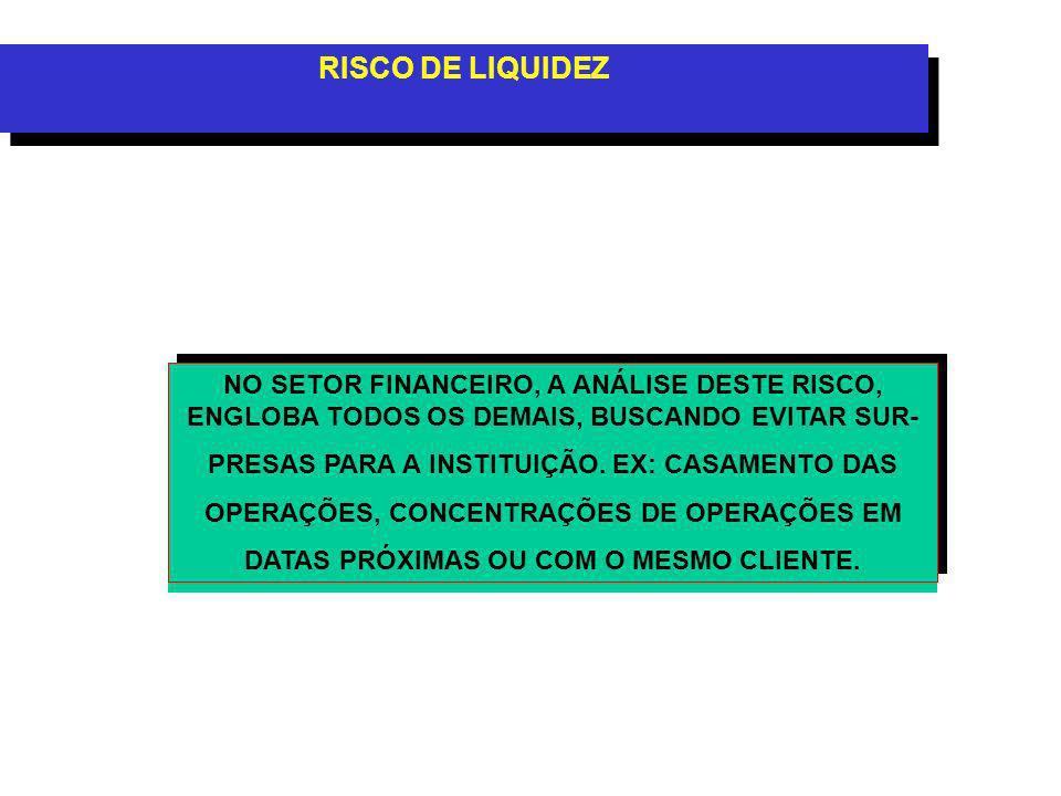 RISCO DE LIQUIDEZ NO SETOR FINANCEIRO, A ANÁLISE DESTE RISCO, ENGLOBA TODOS OS DEMAIS, BUSCANDO EVITAR SUR-