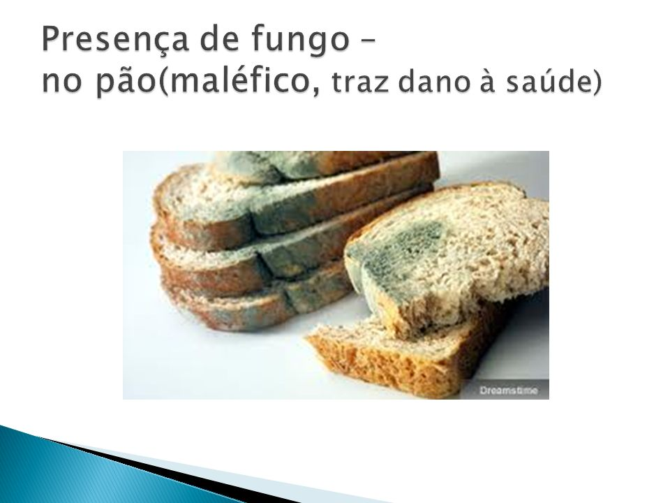 Presença de fungo – no pão(maléfico, traz dano à saúde)