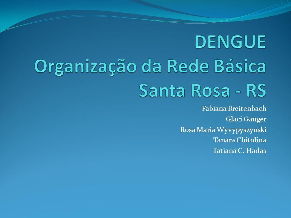 DENGUE Organização da Rede Básica Santa Rosa - RS