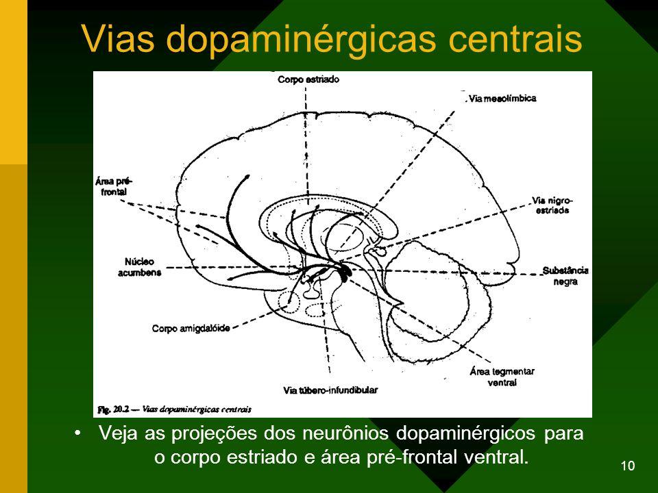 Vias dopaminérgicas centrais