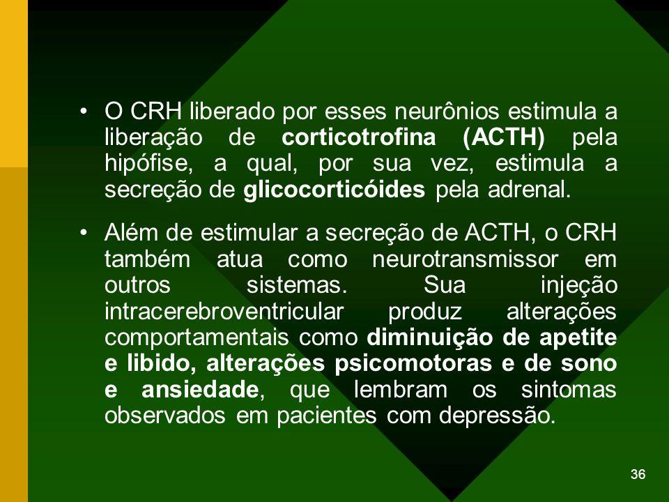 O CRH liberado por esses neurônios estimula a liberação de corticotrofina (ACTH) pela hipófise, a qual, por sua vez, estimula a secreção de glicocorticóides pela adrenal.