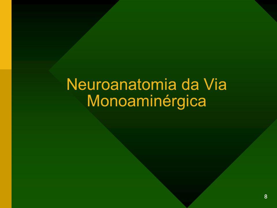 Neuroanatomia da Via Monoaminérgica