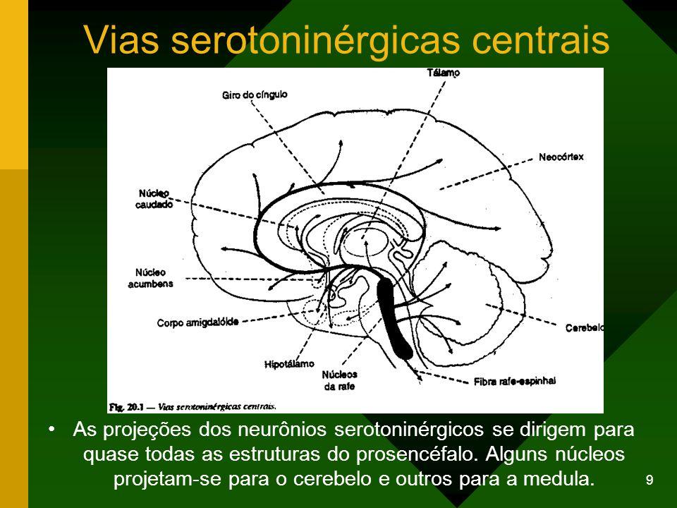 Vias serotoninérgicas centrais
