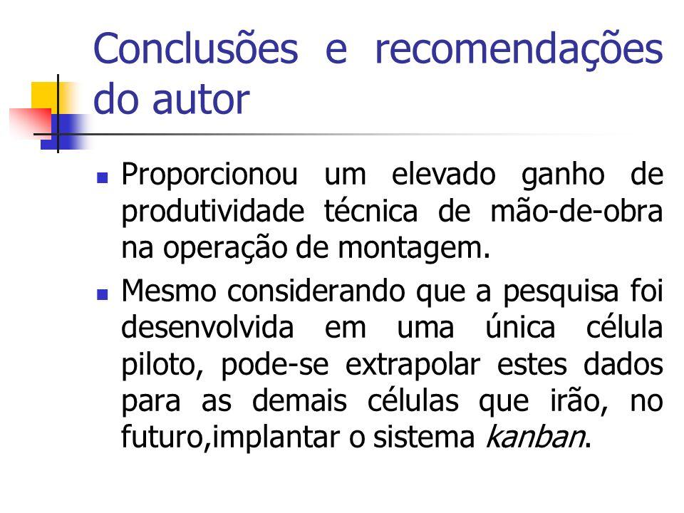 Conclusões e recomendações do autor