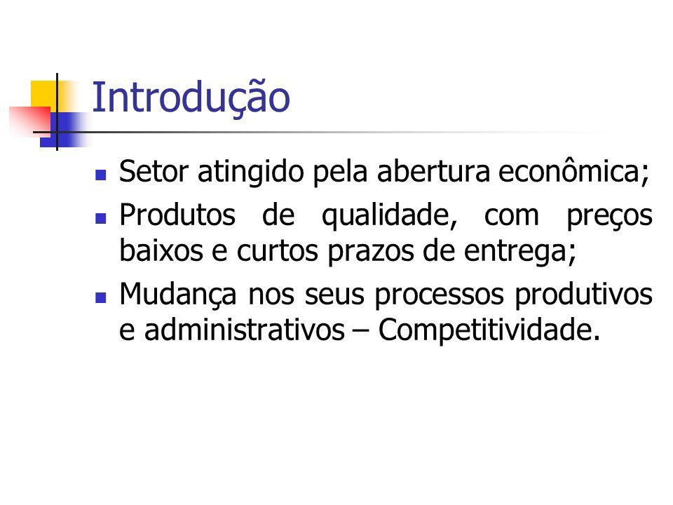 Introdução Setor atingido pela abertura econômica;