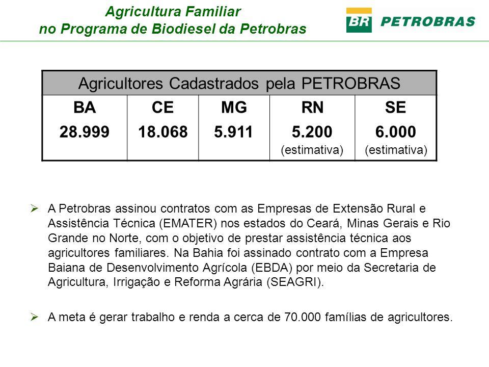 no Programa de Biodiesel da Petrobras