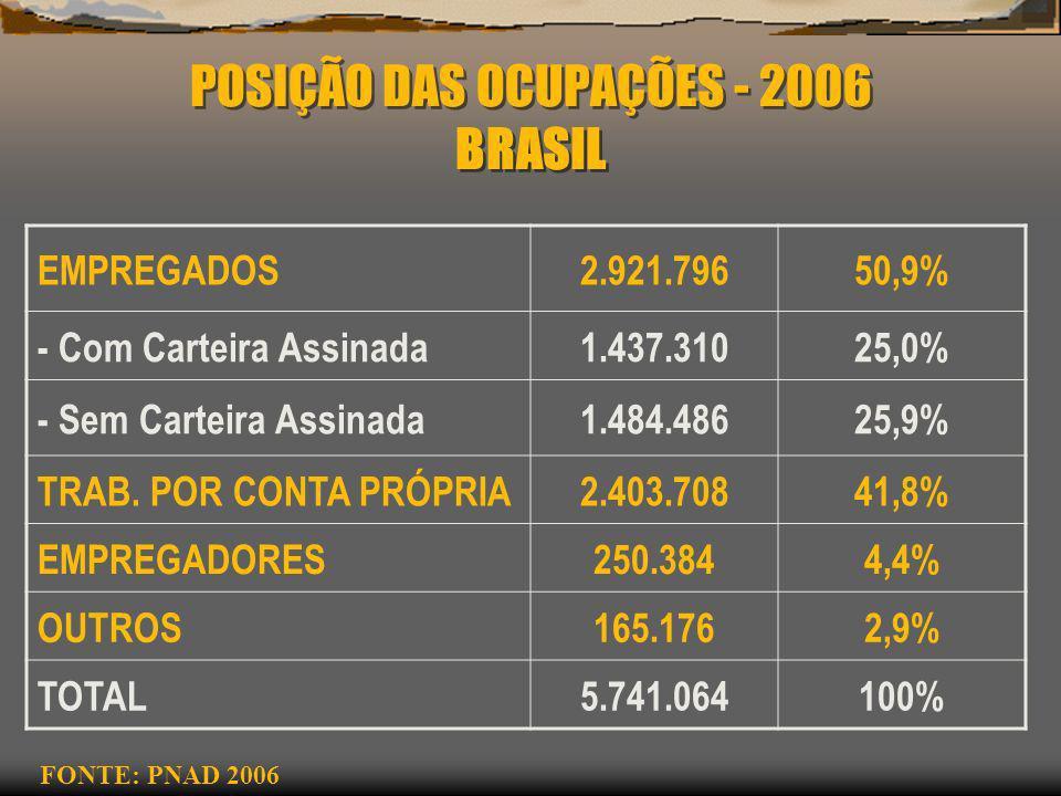 POSIÇÃO DAS OCUPAÇÕES - 2006 BRASIL