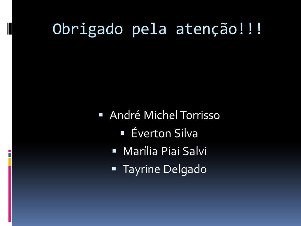 Obrigado pela atenção!!! André Michel Torrisso Éverton Silva