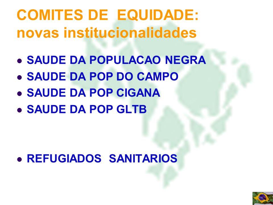 COMITES DE EQUIDADE: novas institucionalidades
