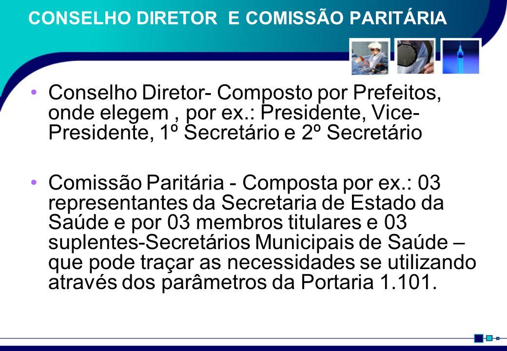 CONSELHO DIRETOR E COMISSÃO PARITÁRIA