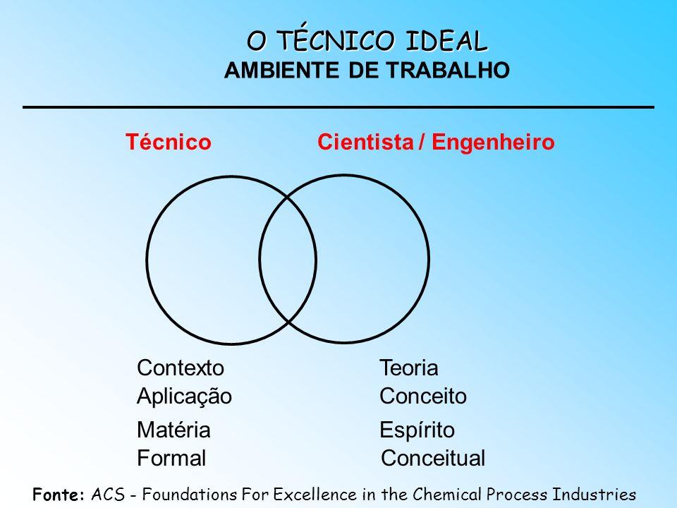 O TÉCNICO IDEAL AMBIENTE DE TRABALHO