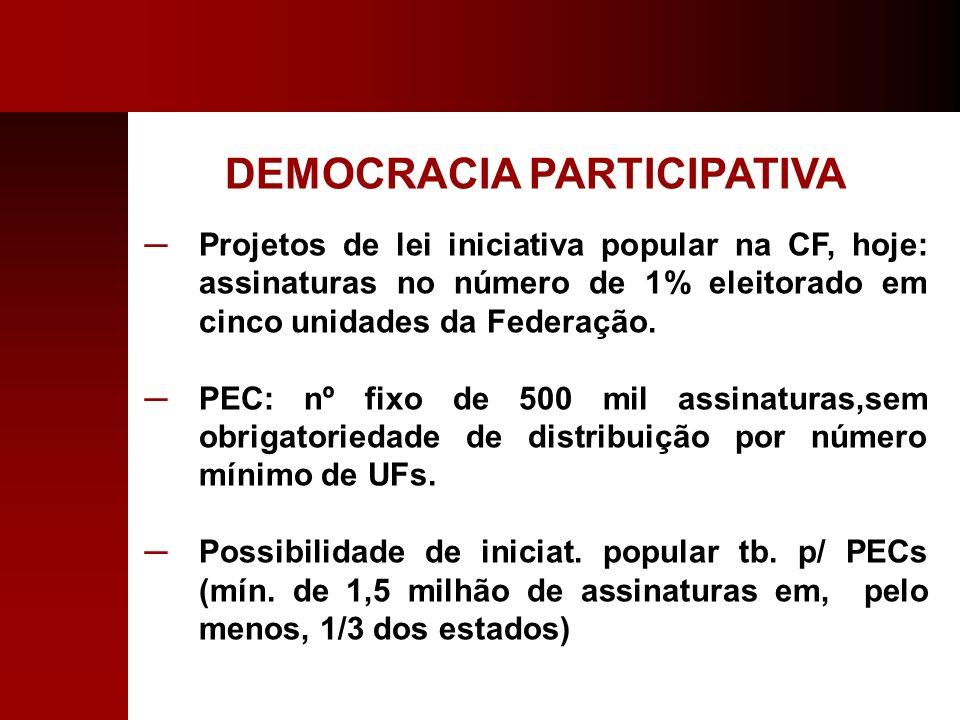 DEMOCRACIA PARTICIPATIVA