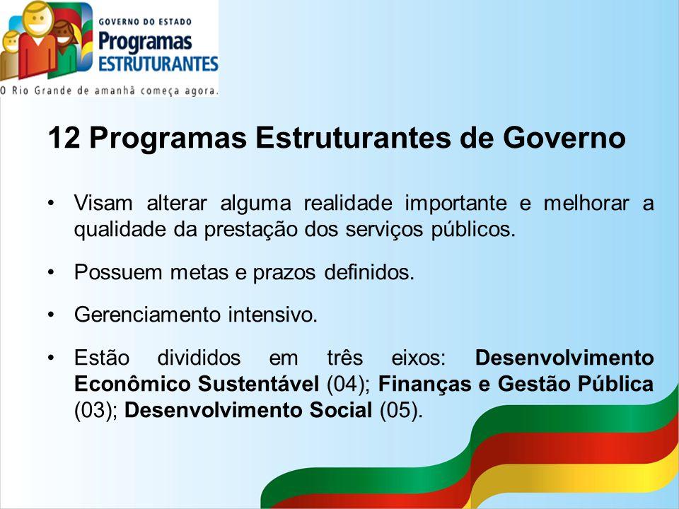 12 Programas Estruturantes de Governo