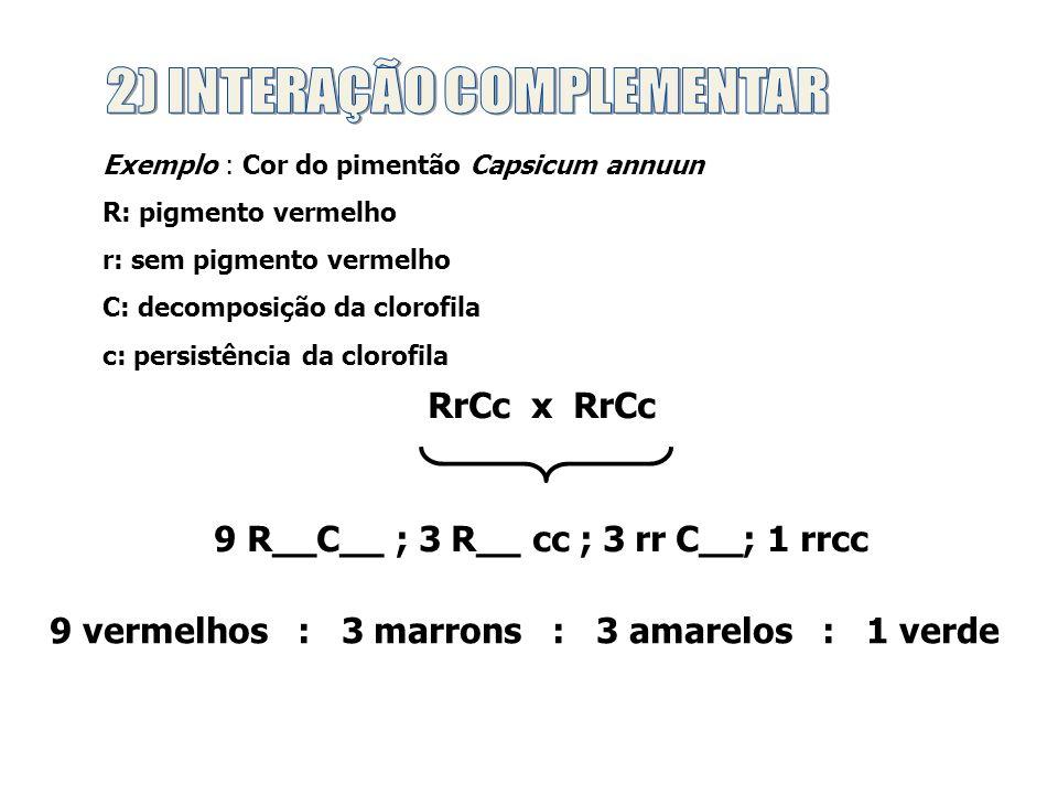 2) INTERAÇÃO COMPLEMENTAR
