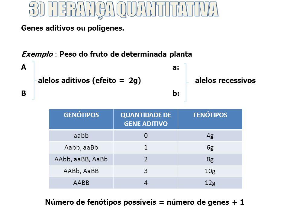 3) HERANÇA QUANTITATIVA QUANTIDADE DE GENE ADITIVO