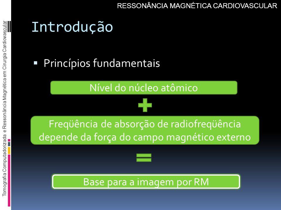Introdução Princípios fundamentais Nível do núcleo atômico