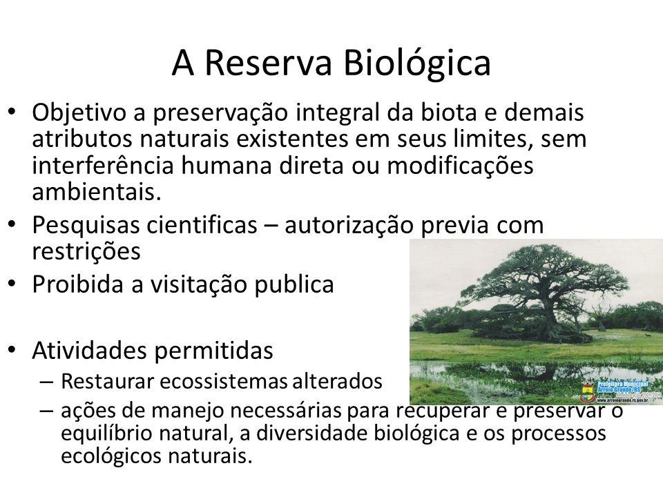 A Reserva Biológica