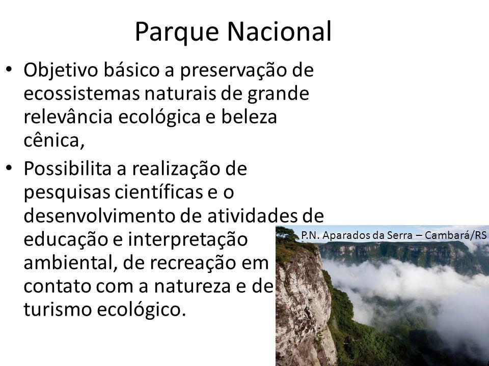 Parque Nacional Objetivo básico a preservação de ecossistemas naturais de grande relevância ecológica e beleza cênica,