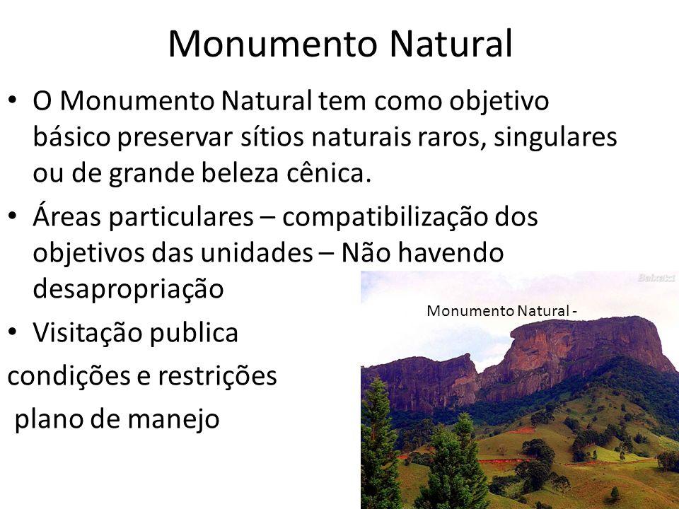 Monumento Natural O Monumento Natural tem como objetivo básico preservar sítios naturais raros, singulares ou de grande beleza cênica.