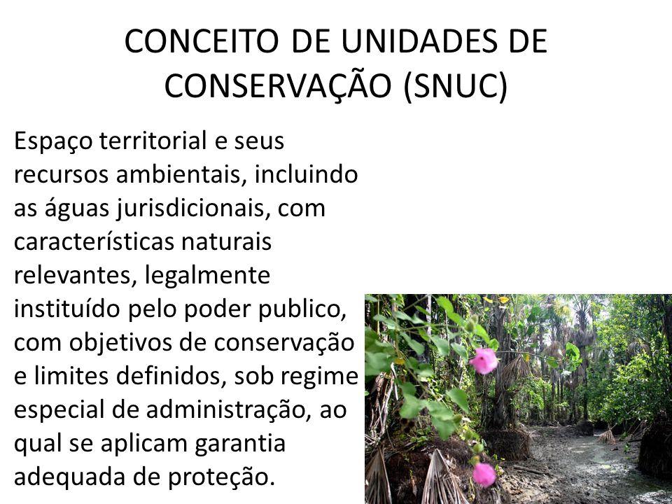 CONCEITO DE UNIDADES DE CONSERVAÇÃO (SNUC)