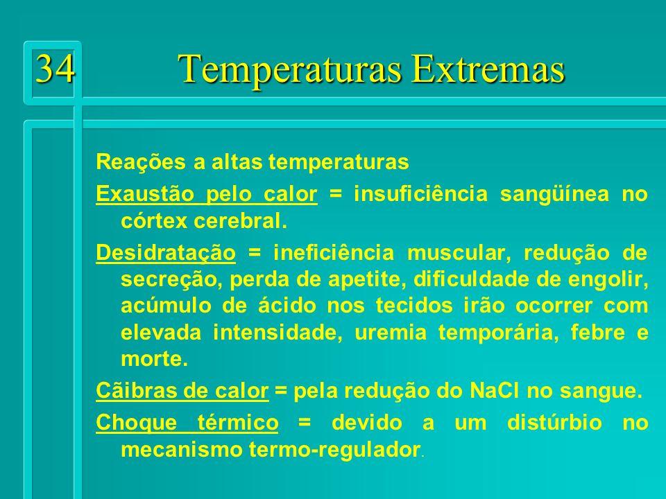 34 Temperaturas Extremas