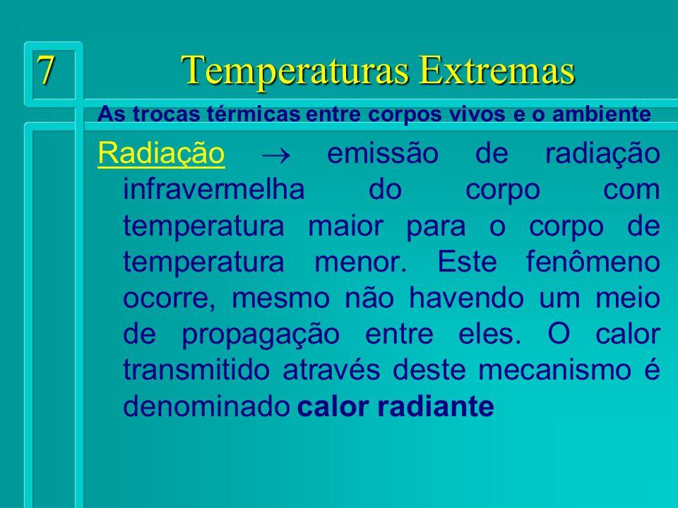 7 Temperaturas Extremas