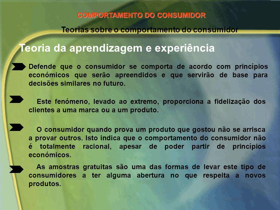 Teorias sobre o comportamento do consumidor