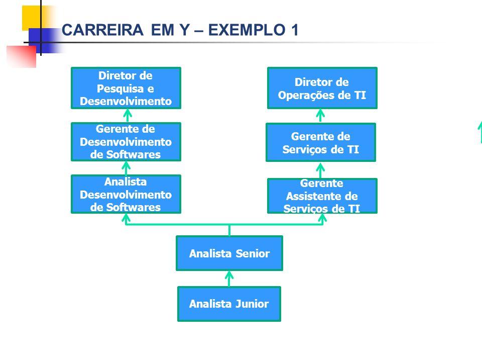 Carreira em Y – exemplo 1 Diretor de Pesquisa e Desenvolvimento