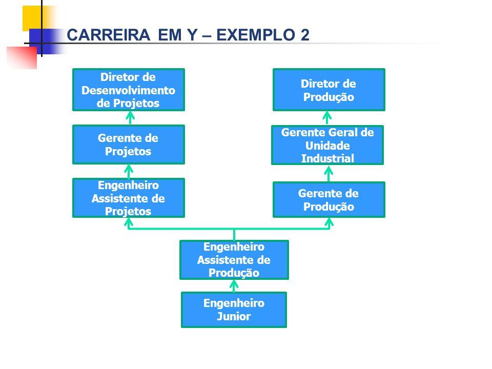 Carreira em Y – exemplo 2 Diretor de Desenvolvimento de Projetos