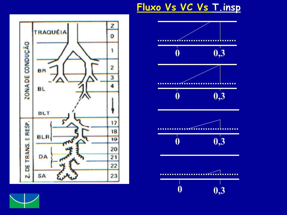 Fluxo Vs VC Vs T.insp 0,3 0,3 0,3 0,3