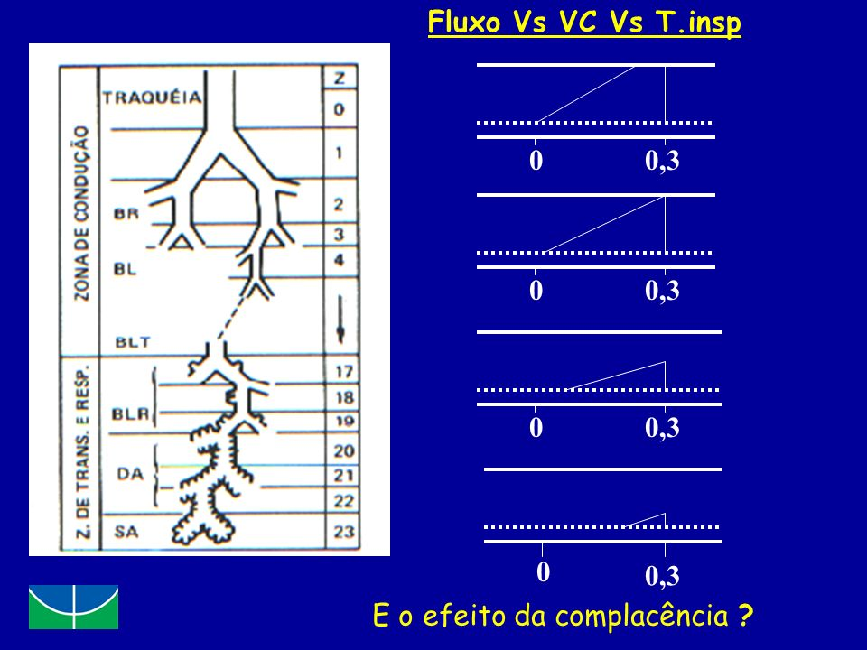 Fluxo Vs VC Vs T.insp 0,3 0,3 0,3 0,3 E o efeito da complacência