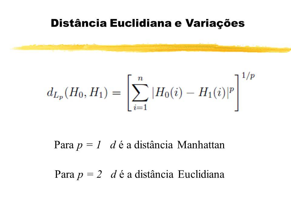 Distância Euclidiana e Variações