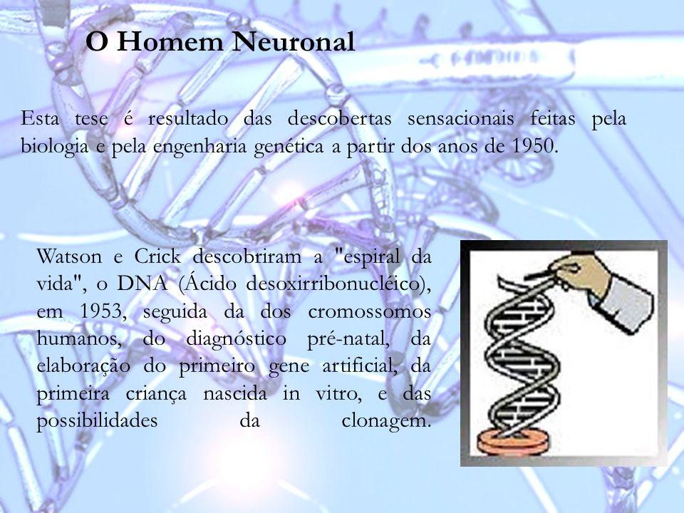 O Homem Neuronal Esta tese é resultado das descobertas sensacionais feitas pela biologia e pela engenharia genética a partir dos anos de 1950.