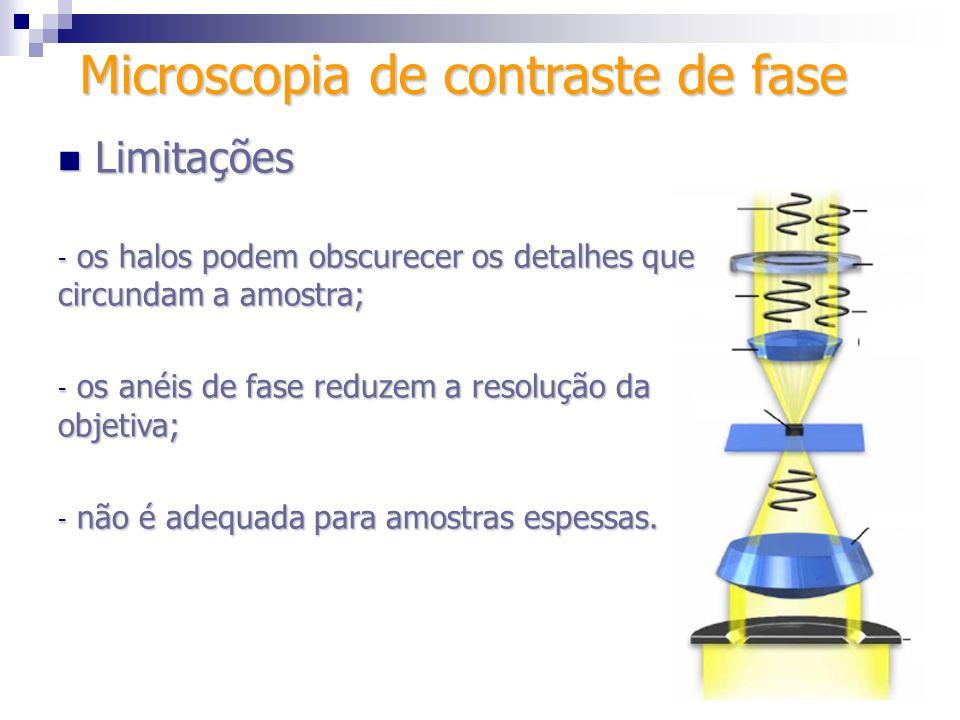 Microscopia de contraste de fase