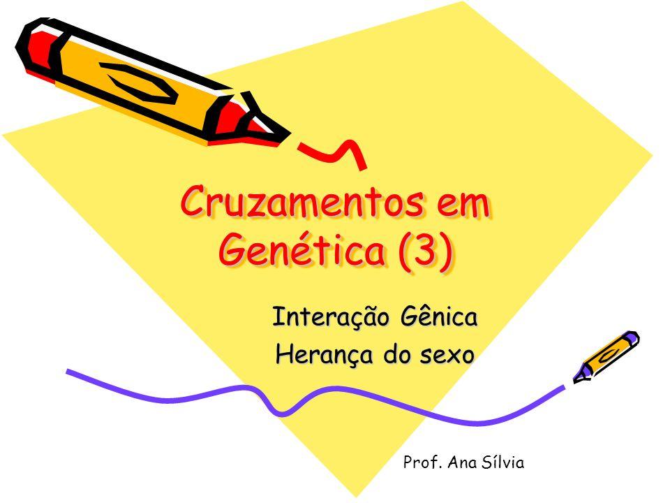 Cruzamentos em Genética (3)