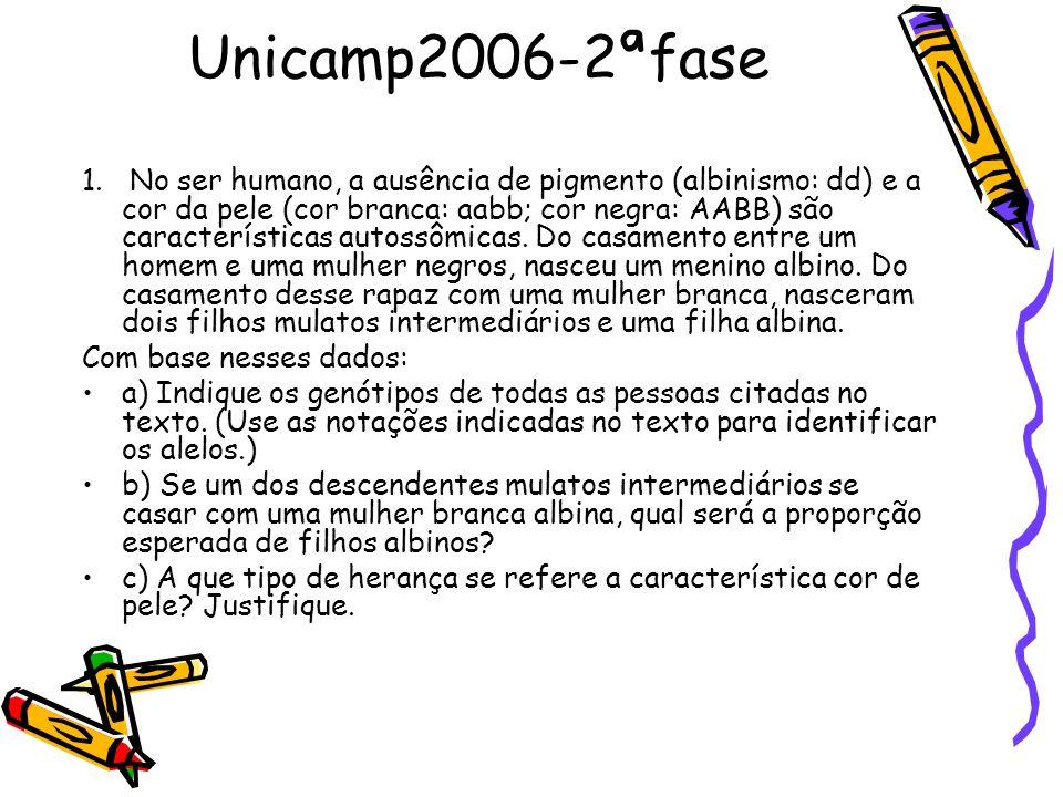 Unicamp2006-2ªfase