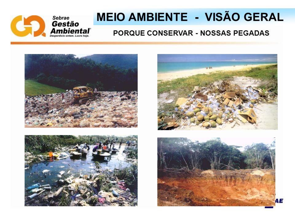 MEIO AMBIENTE - VISÃO GERAL