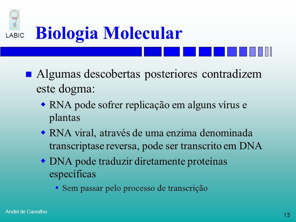 Biologia Molecular Algumas descobertas posteriores contradizem este dogma: RNA pode sofrer replicação em alguns vírus e plantas.