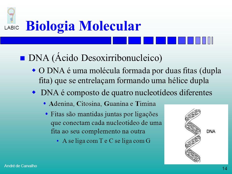 Biologia Molecular DNA (Ácido Desoxirribonucleico)