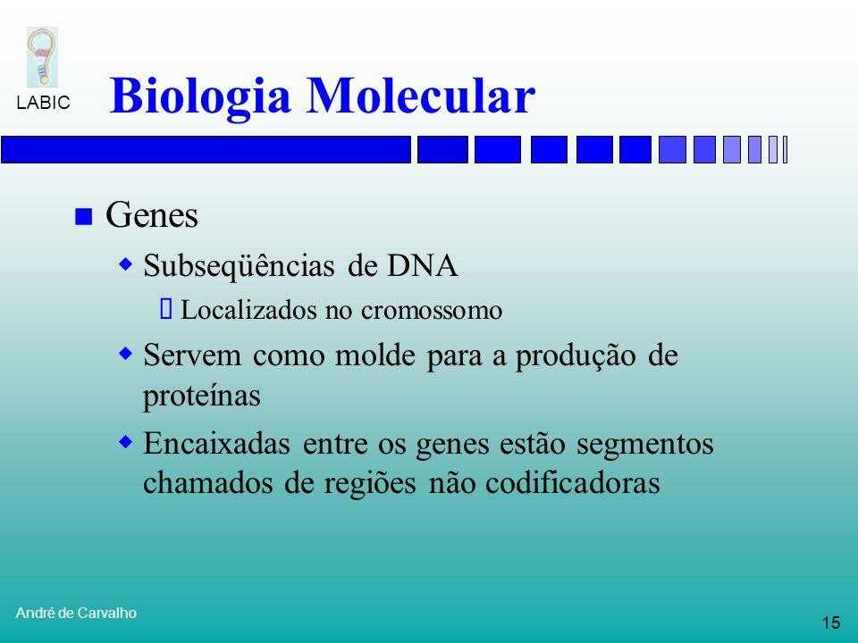Biologia Molecular Genes Subseqüências de DNA
