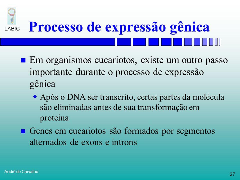 Processo de expressão gênica
