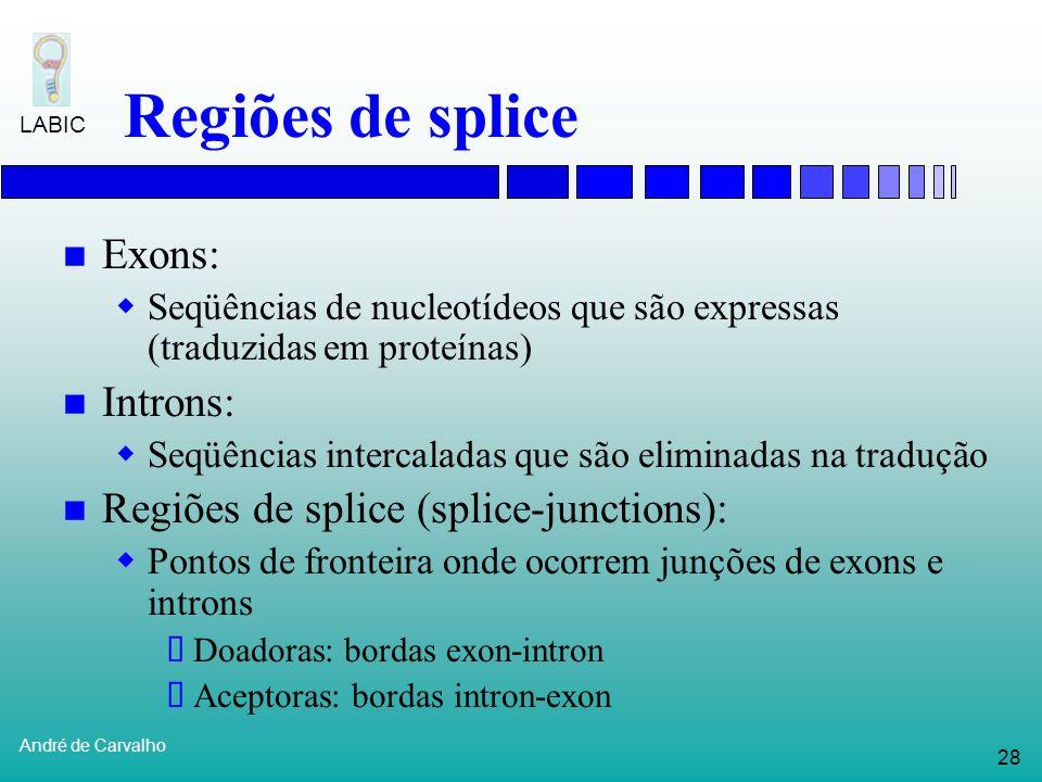 Regiões de splice Exons: Introns: