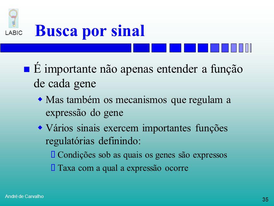 Busca por sinal É importante não apenas entender a função de cada gene
