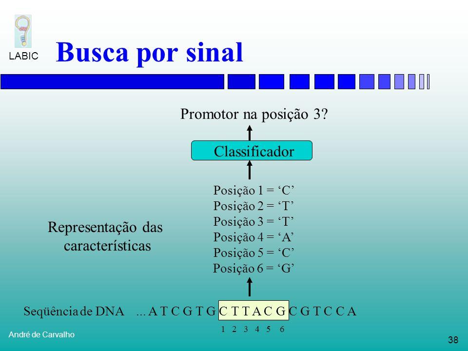 Seqüência de DNA ... A T C G T G C T T A C G C G T C C A