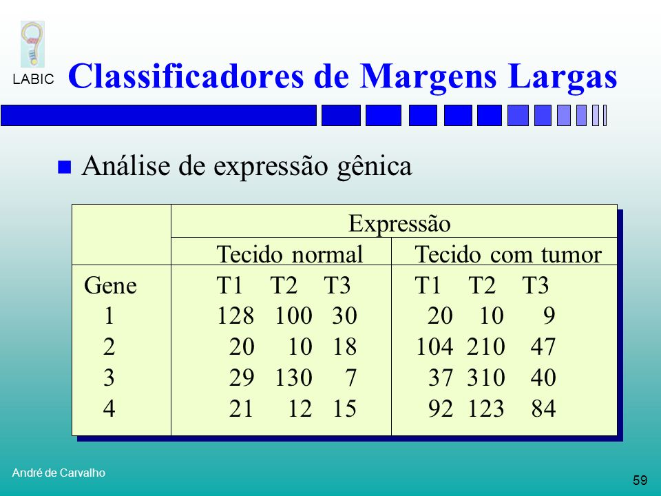 Classificadores de Margens Largas