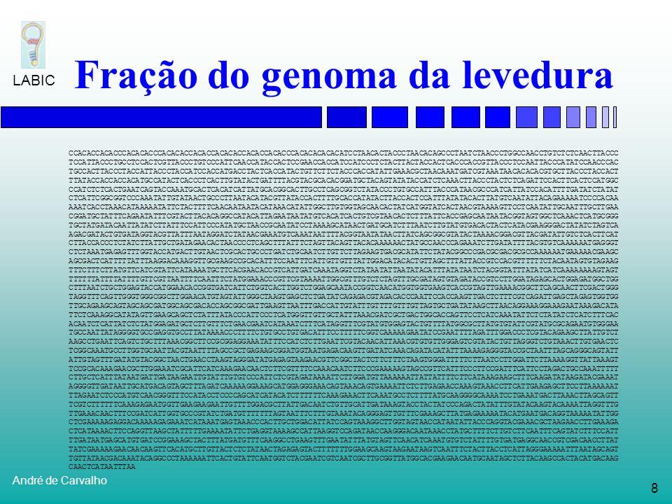 Fração do genoma da levedura