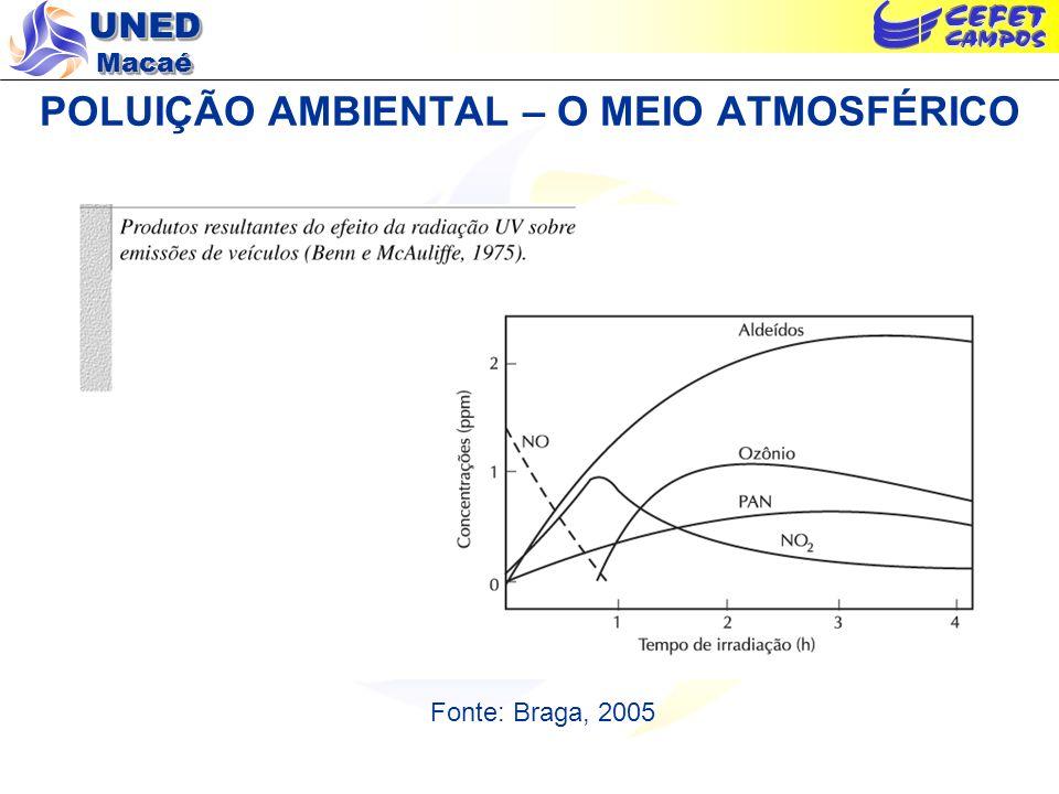 POLUIÇÃO AMBIENTAL – O MEIO ATMOSFÉRICO